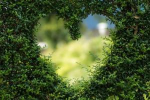 Nájdite lásku